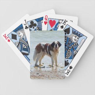 Saint Bernard dog beautiful photo on beach Bicycle Playing Cards