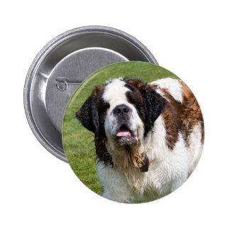 Saint Bernard dog button pin badge gift idea