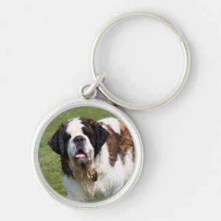 Saint Bernard dog keychain, keyring, gift Silver-Colored Round Key Ring