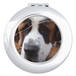 Saint Bernard Dog Mirror For Makeup