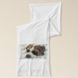 Saint Bernard Dog Scarf