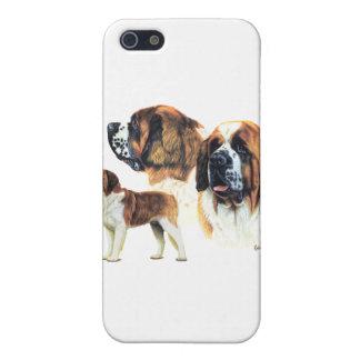 Saint Bernard iPhone 5/5S Covers
