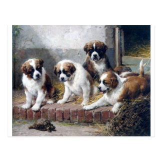 Saint Bernard puppies turtle cute painting dogs Postcard