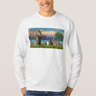 Saint Fraancis - 3 dogs, 2 cats +++ T-Shirt