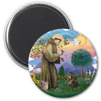 Saint Francis - Persian Tortie cat Fridge Magnets