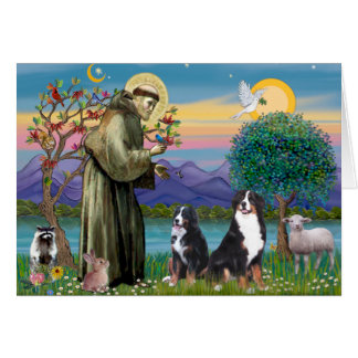 Saint Francis - Two Bernese Mountain Dogs Card