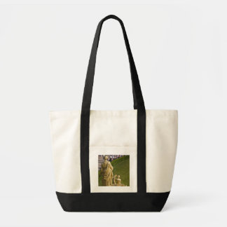 Saint Petersburg, Grand Cascade fountains 10 Tote Bag