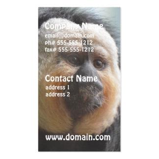Saki Monkey Pack Of Standard Business Cards