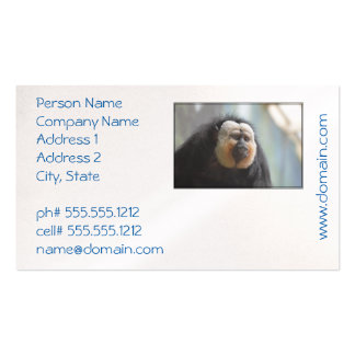 Saki Monkey Pack Of Standard Business Cards