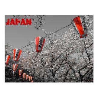 Sakura 2014 Postcard