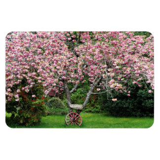 Sakura and Wagon Wheel Magnets