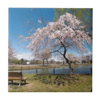 Sakura Azulejo Ceramica