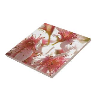 Sakura Azulejo De Cerâmica
