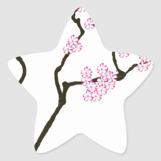 sakura bloom white eye bird, tony fernandes star sticker