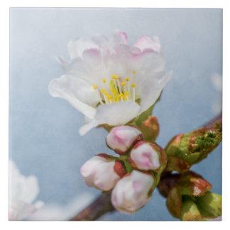 Sakura Blossom Ceramic Tile