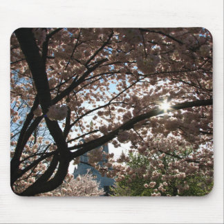 Sakura Branches Mouse Pads