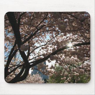 Sakura Branches Mouse Pads