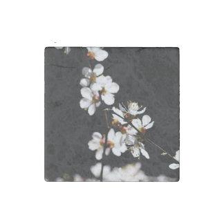 Sakura flowers stone magnet