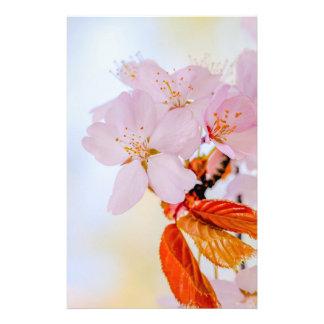 Sakura - Japanese cherry blossom 14 Cm X 21.5 Cm Flyer