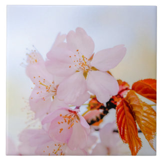 Sakura - Japanese cherry blossom Large Square Tile