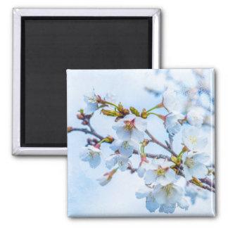 Sakura - Japanese Cherry Blossom Refrigerator Magnet