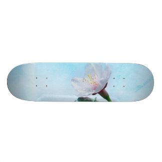 Sakura - Japanese Cherry Blossom Skate Board Deck