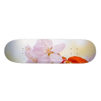 Sakura - Japanese cherry blossom Custom Skate Board