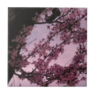 Sakura jpg tile