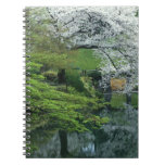 Sakura, Koishikawa Koraku-en Garden, Tokyo, Spiral Notebooks