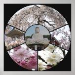 Sakura Meditation_ by Adela Stefanov Poster