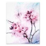 Sakura mini photograph