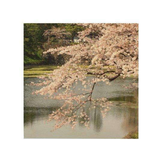 Sakura Over the Moat Wood Wall Decor
