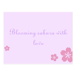 Sakura poscard postcard