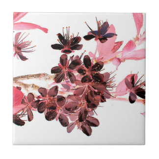 sakura small square tile