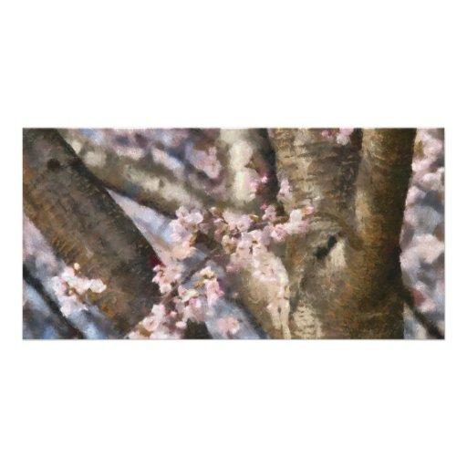 Sakura - Spring Blossom Photo Greeting Card