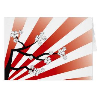 Sakura Sunrise White Cherry Blossoms Flowers Zen Card