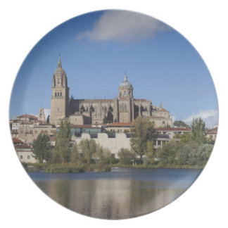 Salamanca Cathedrals and town 2 Plate