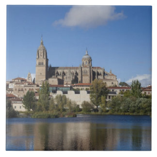 Salamanca Cathedrals and town 2 Tile
