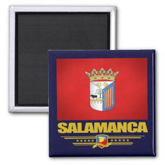 Salamanca Square Magnet