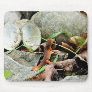 Salamander Mouse Pad