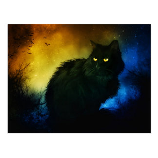 Salem Night Postcard