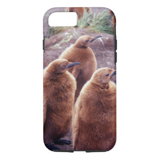 Salisbury Plain, South Georgia: Juvenile King iPhone 7 Case
