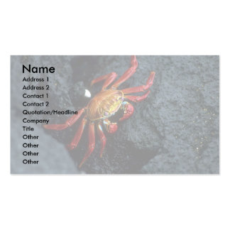 Sally Lightfoot Crab Double-Sided Standard Business Cards (Pack Of 100)