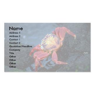 Sally Lightfoot Crab Business Cards