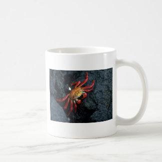 Sally Lightfoot Crab Classic White Coffee Mug