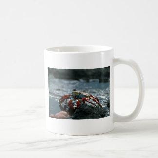Sally Lightfoot Crab Coffee Mugs