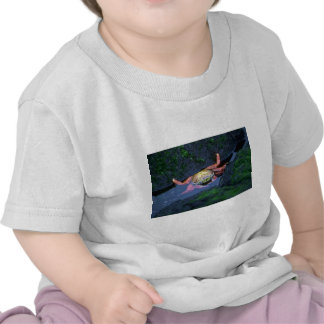 Sally Lightfoot Crab Entering Water Shirts