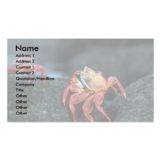 Sally Lightfoot Crabs Double-Sided Standard Business Cards (Pack Of 100)