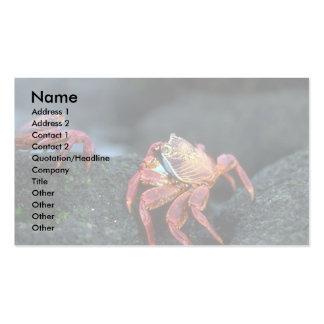 Sally Lightfoot Crabs Business Card