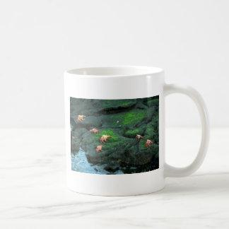 Sally Lightfoot Crabs Mug